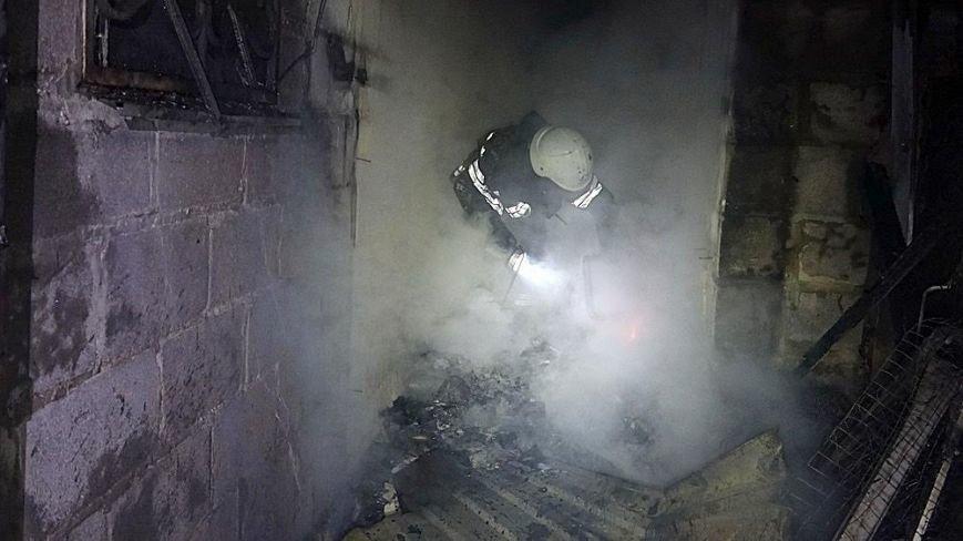 В Мариуполе в горящем доме собака спасла хозяина от смерти (ФОТО), фото-2
