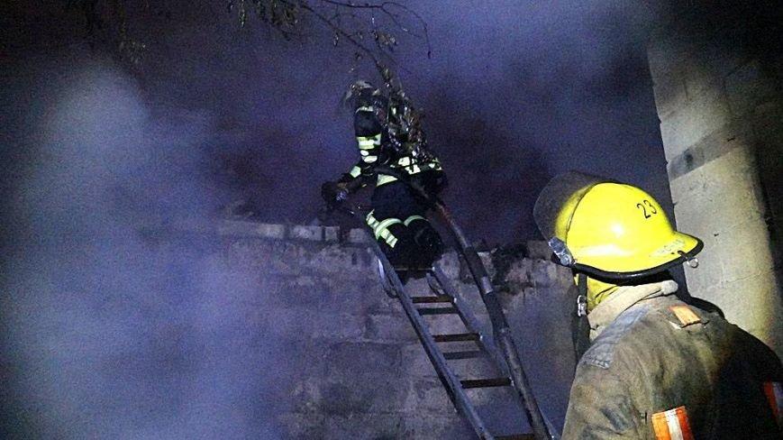 В Мариуполе в горящем доме собака спасла хозяина от смерти (ФОТО), фото-9