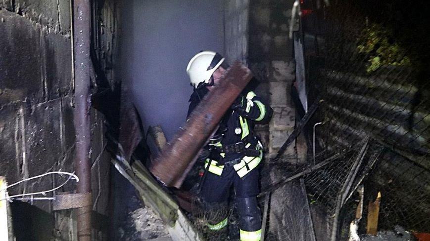 В Мариуполе в горящем доме собака спасла хозяина от смерти (ФОТО), фото-4