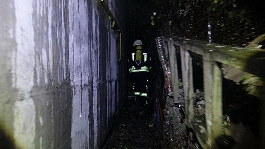 В Мариуполе в горящем доме собака спасла хозяина от смерти (ФОТО), фото-8