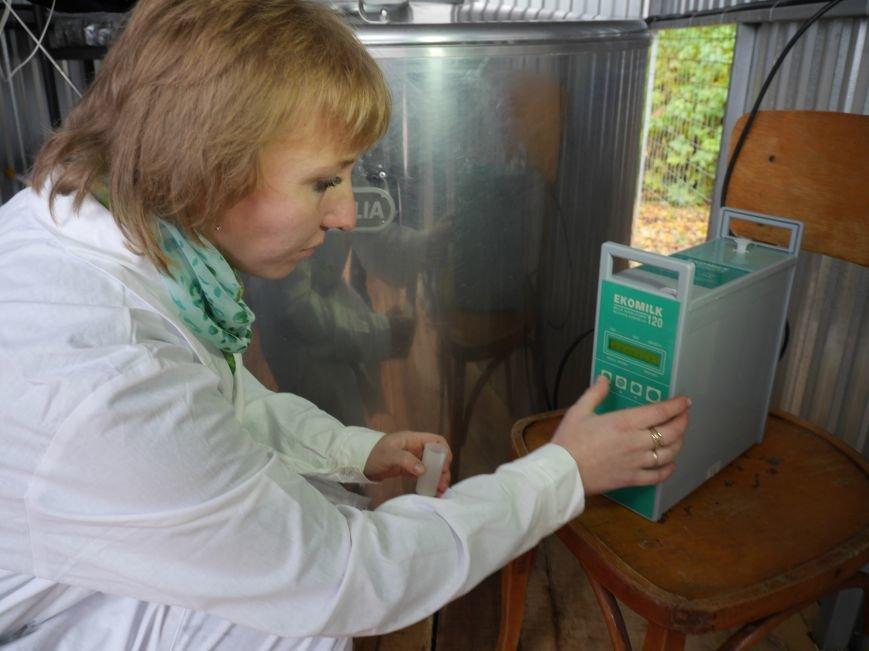 """""""МРІЯ"""" долучилася до відкриття молочного кооперативу «Годувальниця» (Фоторепортаж), фото-3"""