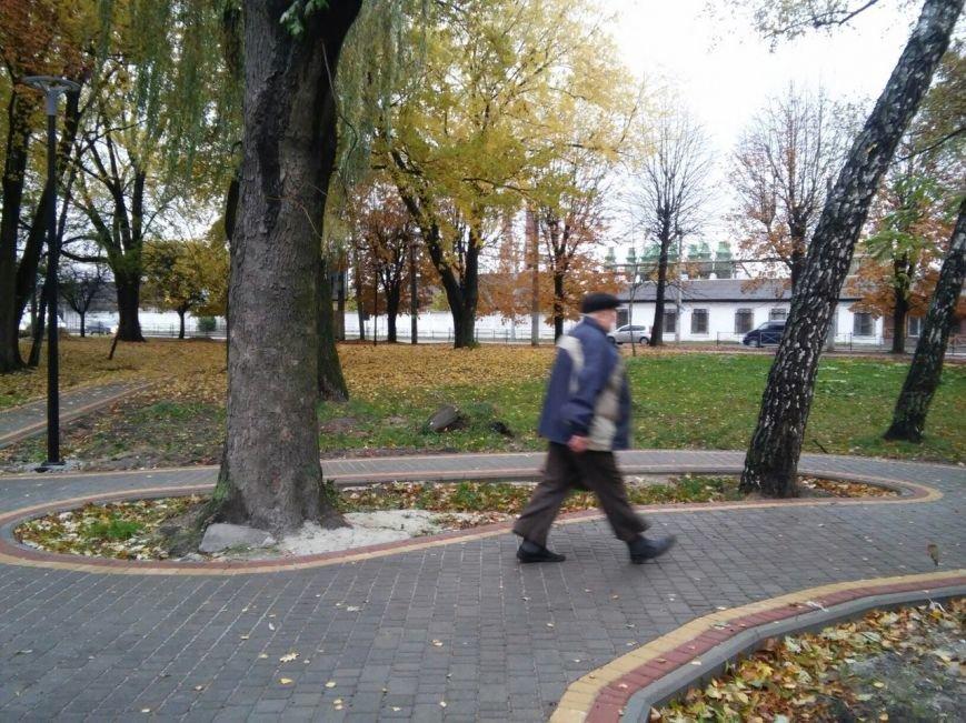 У Львові завершують облаштовувати громадські простори на вулиці Ряшівській (ФОТО), фото-4