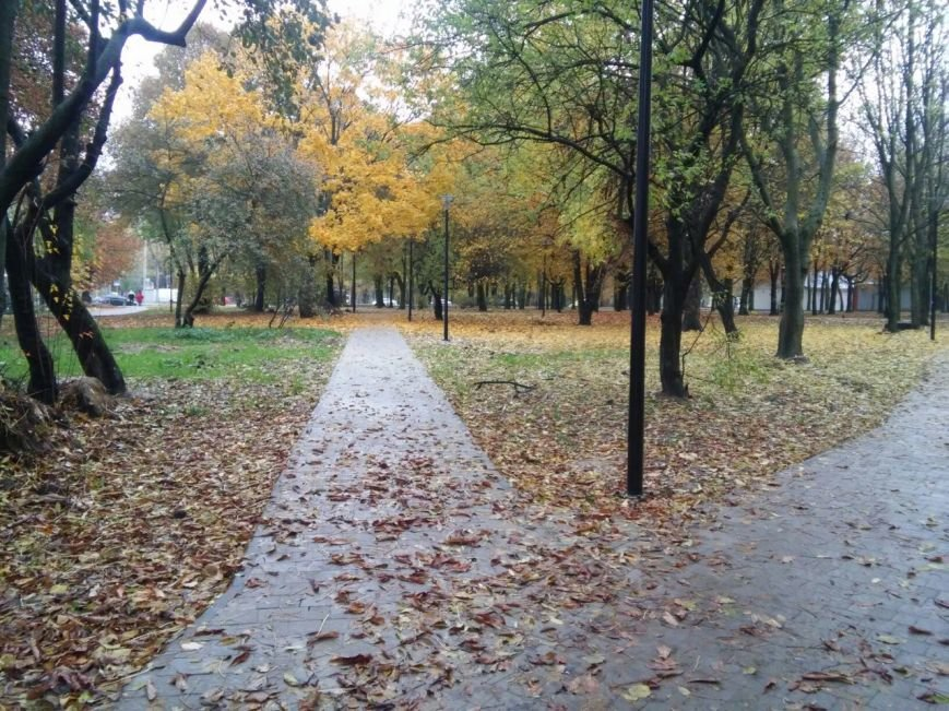 У Львові завершують облаштовувати громадські простори на вулиці Ряшівській (ФОТО), фото-1