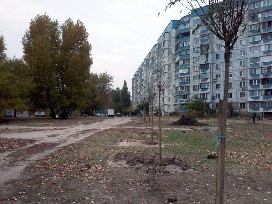 Дерева-1