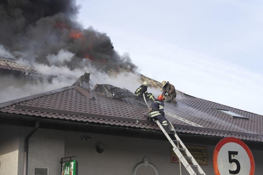 В Покровске пожаром охвачено здание ресторана «Лоза», фото-3