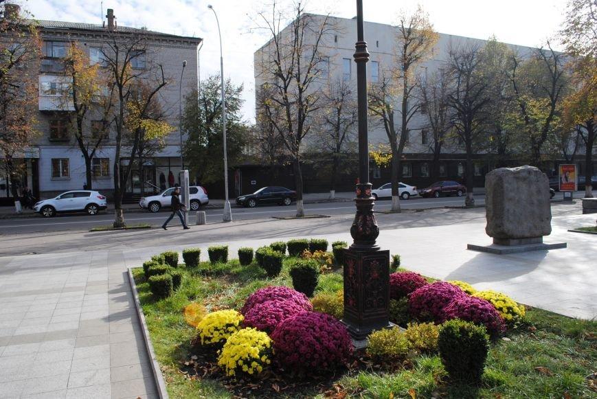 Продолжаем озеленяться: в Кременчуге под зиму высаживают хризантемы, тюльпаны, кусты и деревья (фоторепортаж), фото-15