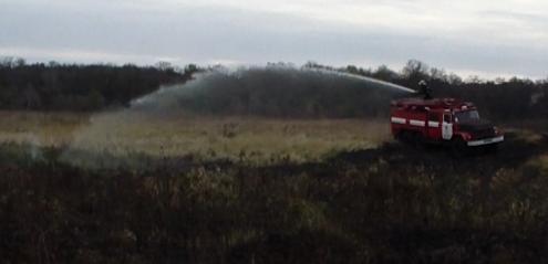 Чотири гектари сухої трави горіло поблизу села Озаричі (+ФОТО та ВІДЕО), фото-3