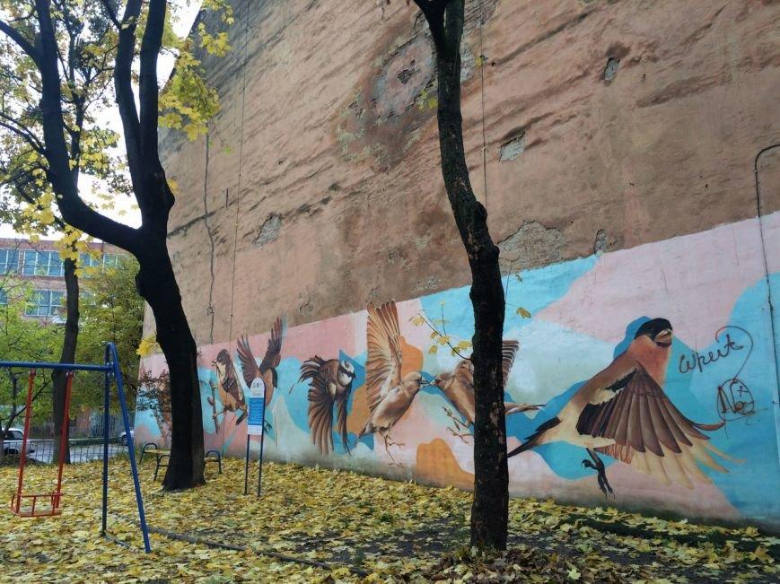 Львівський стріт-арт: графіті Львова, які вражають (ФОТО), фото-6