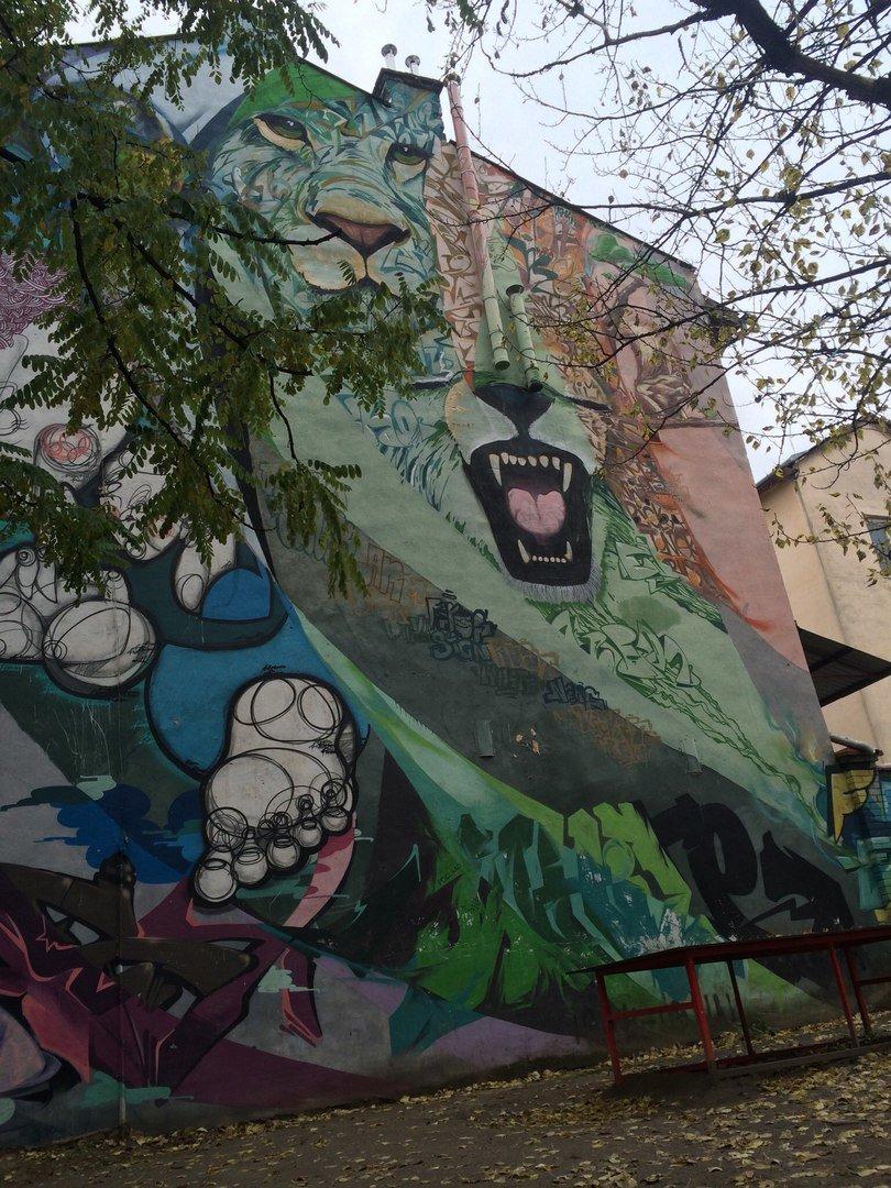 Львівський стріт-арт: графіті Львова, які вражають (ФОТО), фото-12