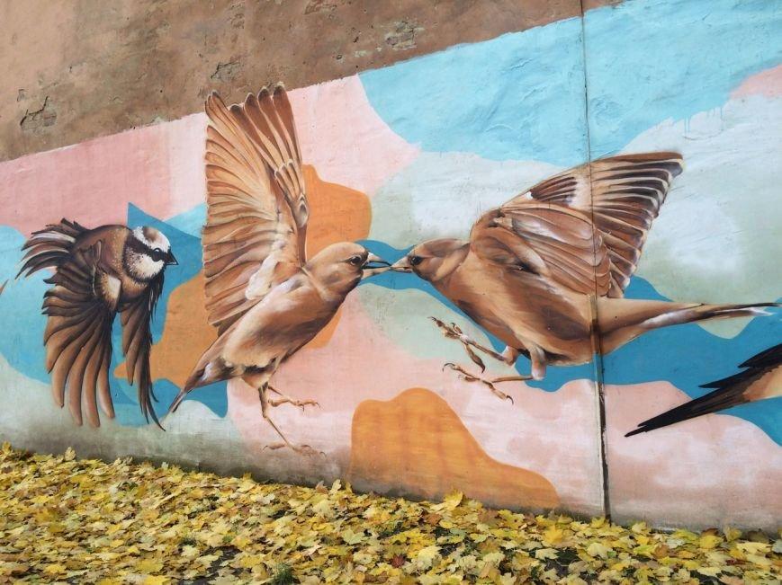 Львівський стріт-арт: графіті Львова, які вражають (ФОТО), фото-5