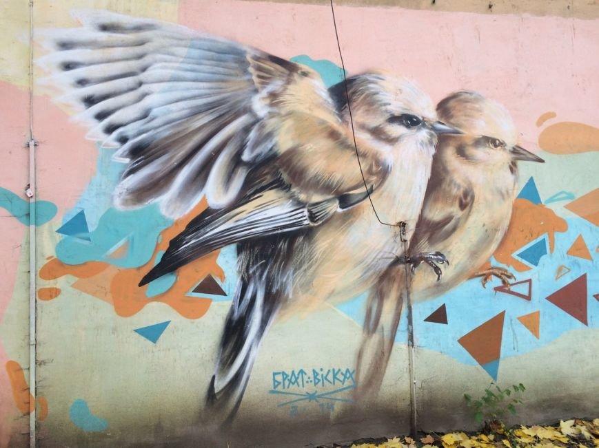 Львівський стріт-арт: графіті Львова, які вражають (ФОТО), фото-3