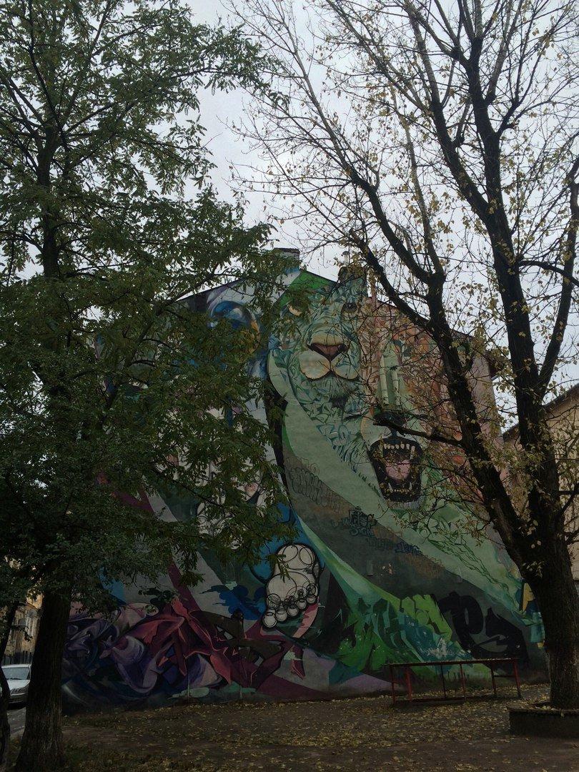 Львівський стріт-арт: графіті Львова, які вражають (ФОТО), фото-13