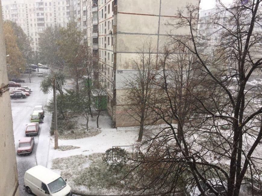 В Харькове выпал первый снег (ФОТО), фото-2