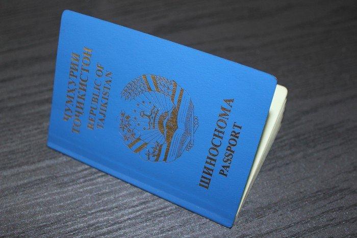 Гродненские пограничники задержали таджика, который по поддельному паспорту через Беларусь хотел попасть в ЕС, фото-1
