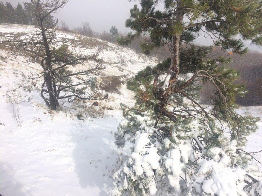 В Крыму выпал снег (ФОТО, ВИДЕО), фото-2