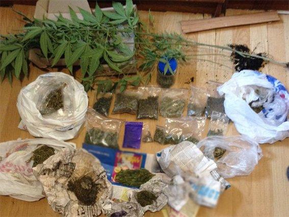 В Кропивницком у мужчины изъяли 10 килограмм марихуаны (ФОТО), фото-2