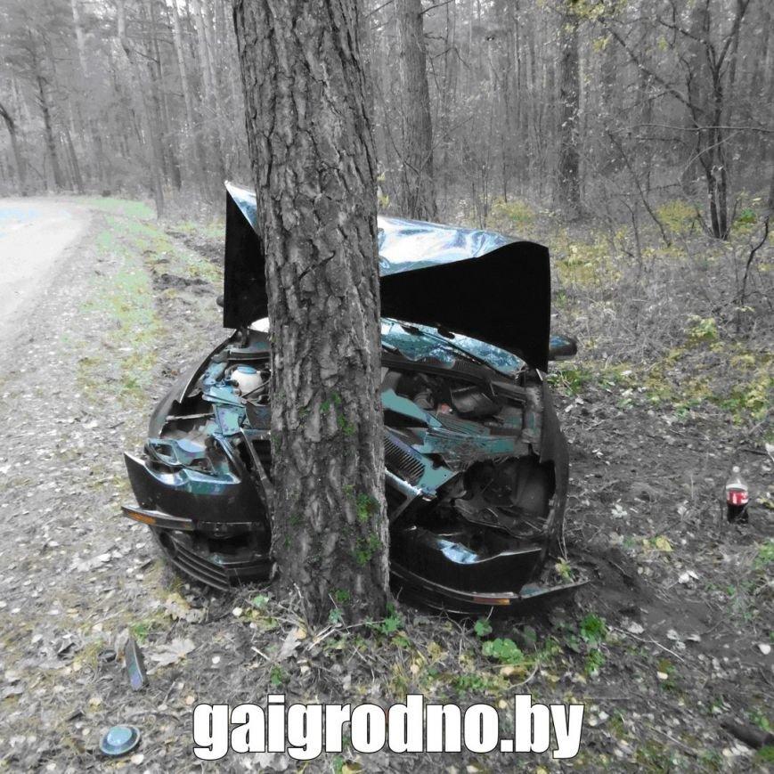 В Гродно студент взял у бабушки машину покататься и вместе с новой знакомой из ночного клуба пьяным врезался в дерево около Юбилейного озера, фото-2