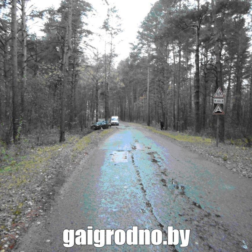 В Гродно студент взял у бабушки машину покататься и вместе с новой знакомой из ночного клуба пьяным врезался в дерево около Юбилейного озера, фото-3