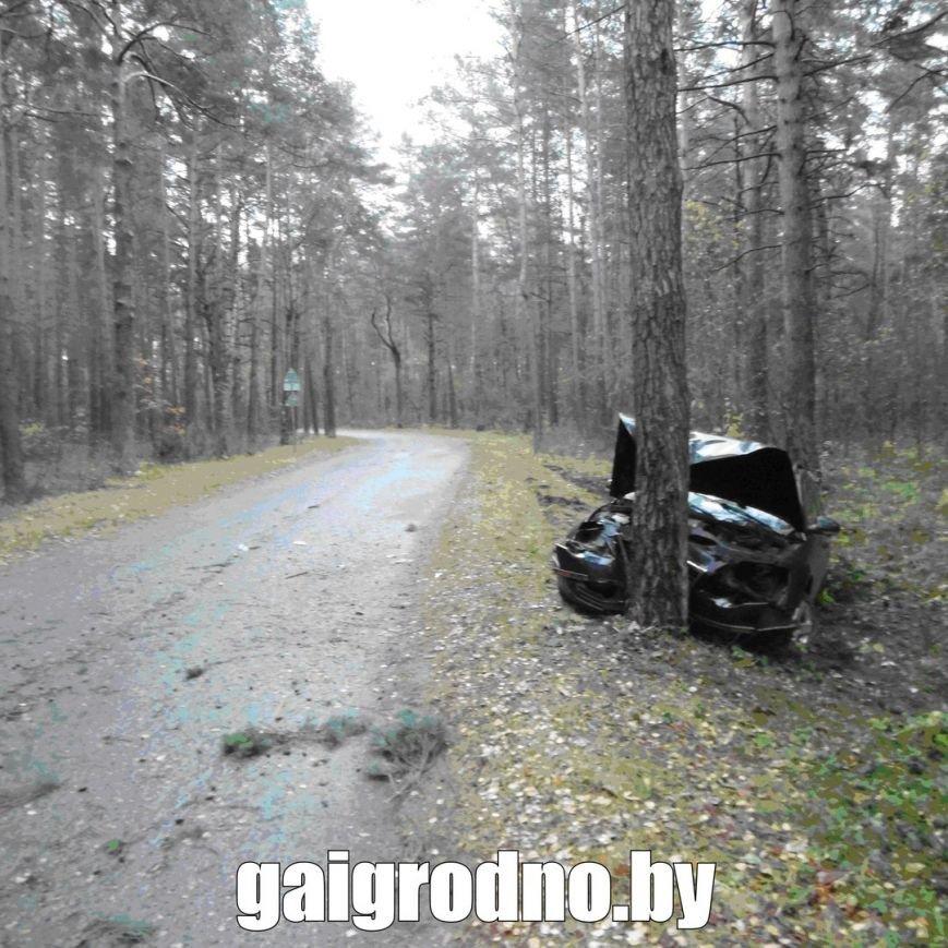 В Гродно студент взял у бабушки машину покататься и вместе с новой знакомой из ночного клуба пьяным врезался в дерево около Юбилейного озера, фото-4