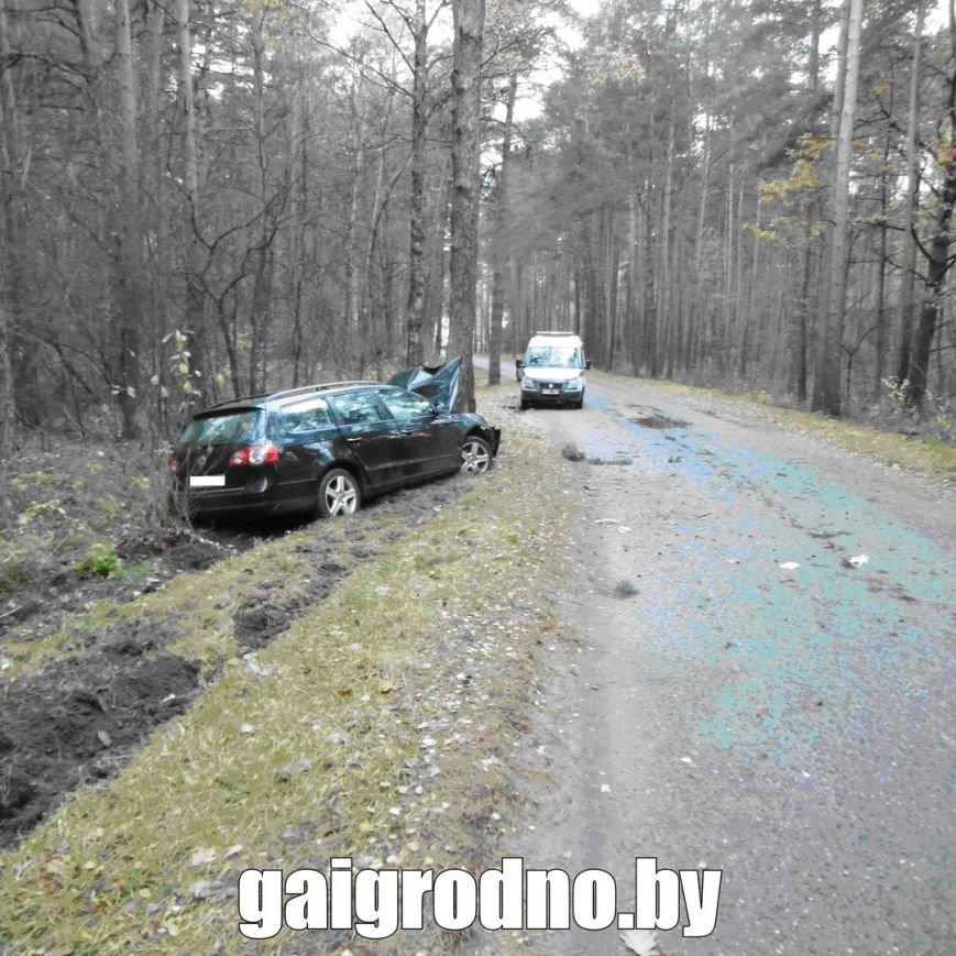 В Гродно студент взял у бабушки машину покататься и вместе с новой знакомой из ночного клуба пьяным врезался в дерево около Юбилейного озера, фото-1
