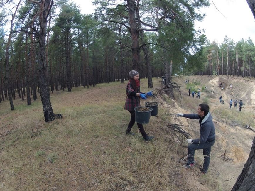 """В Матвеевском лесу прошла операция """"Дубы"""": активисты высадили сотню дубов (ФОТО), фото-3"""