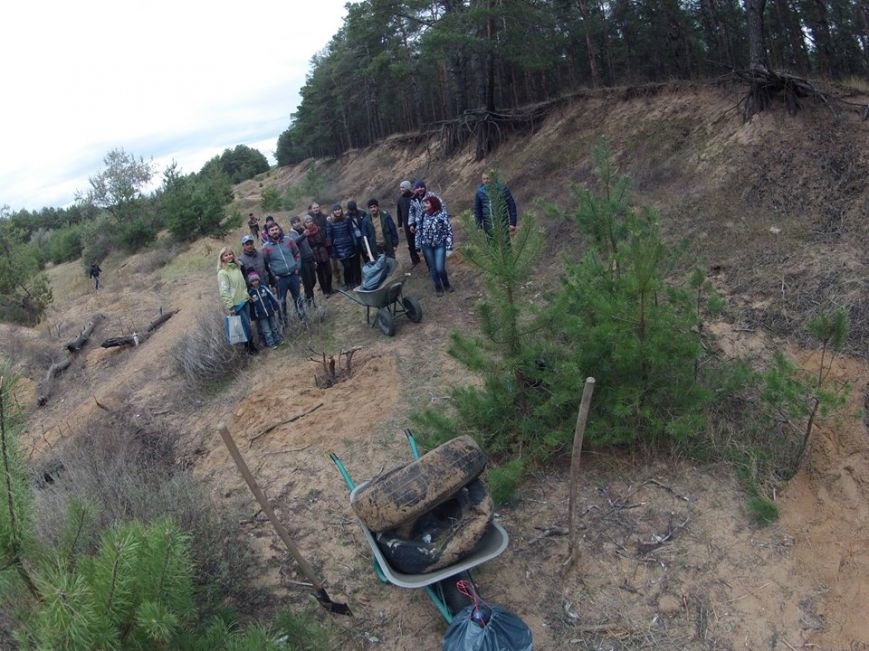 """В Матвеевском лесу прошла операция """"Дубы"""": активисты высадили сотню дубов (ФОТО), фото-6"""