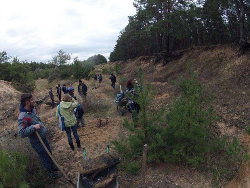 """В Матвеевском лесу прошла операция """"Дубы"""": активисты высадили сотню дубов (ФОТО), фото-1"""
