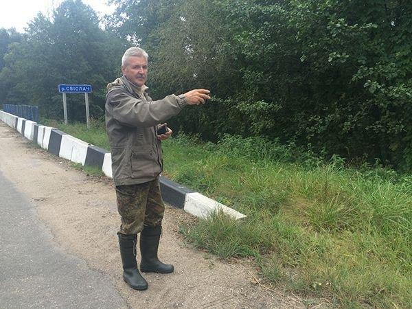 Шакал, которого нашли в Гродненской области, оказался волком с примесью собаки, фото-1