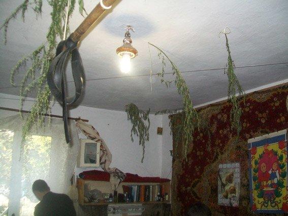 Боеприпасы для коллекции и каннибас для ванной: на Николаевщине полиция провела обыск в доме пенсионера (ФОТО), фото-1