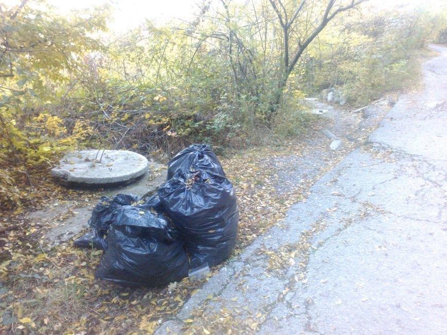 """На Солнечной тропе продолжается мусорный """"беспредел"""", фото-6"""