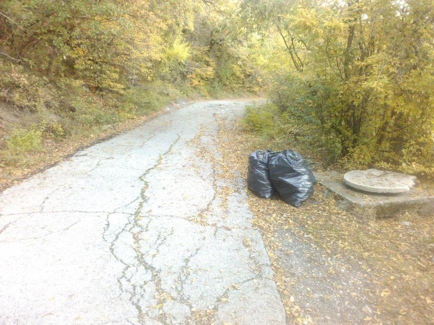 """На Солнечной тропе продолжается мусорный """"беспредел"""", фото-4"""