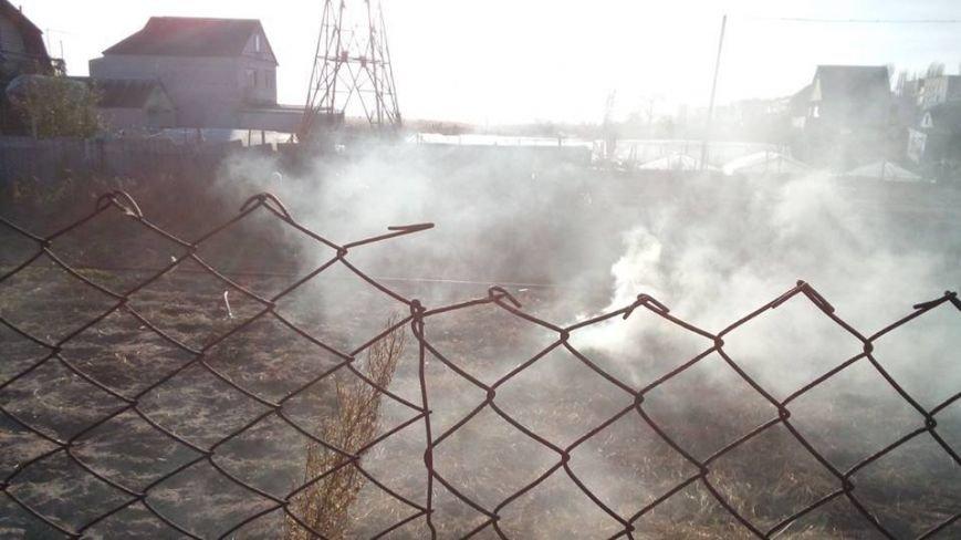 В Матвеевке избили мужчину, который сжигал листья (ФОТО, ВИДЕО), фото-4