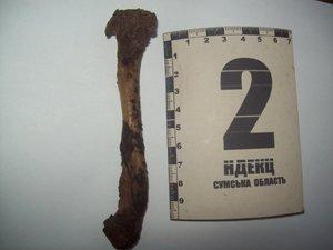 Сотрудники прокуратуры Сумщины обнаружили очередную находку: в лесу нашли человеческие кости (ФОТО), фото-6