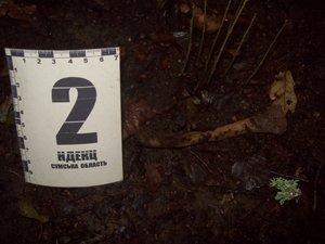 Сотрудники прокуратуры Сумщины обнаружили очередную находку: в лесу нашли человеческие кости (ФОТО), фото-3