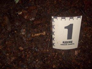Сотрудники прокуратуры Сумщины обнаружили очередную находку: в лесу нашли человеческие кости (ФОТО), фото-2