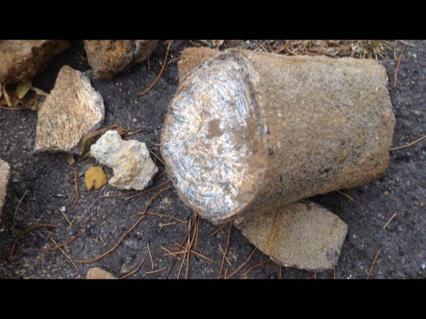 В Мариуполе нашли кости мамонта (Дополнено, ФОТО, ВИДЕО), фото-8