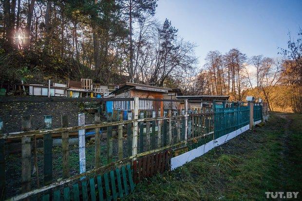 """""""Вот и всё"""". Как сейчас живет незаконный дачный поселок на окраине Гродно, который должны на днях снести, фото-7"""