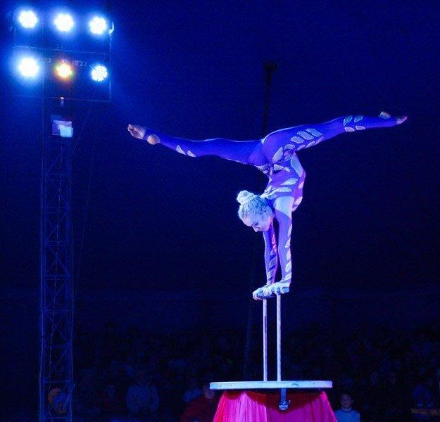 В Мелитополе начал гастроли Киевский профессиональный цирк «Олимп», фото-5