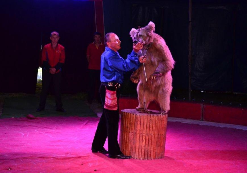 В Мелитополе начал гастроли Киевский профессиональный цирк «Олимп», фото-8
