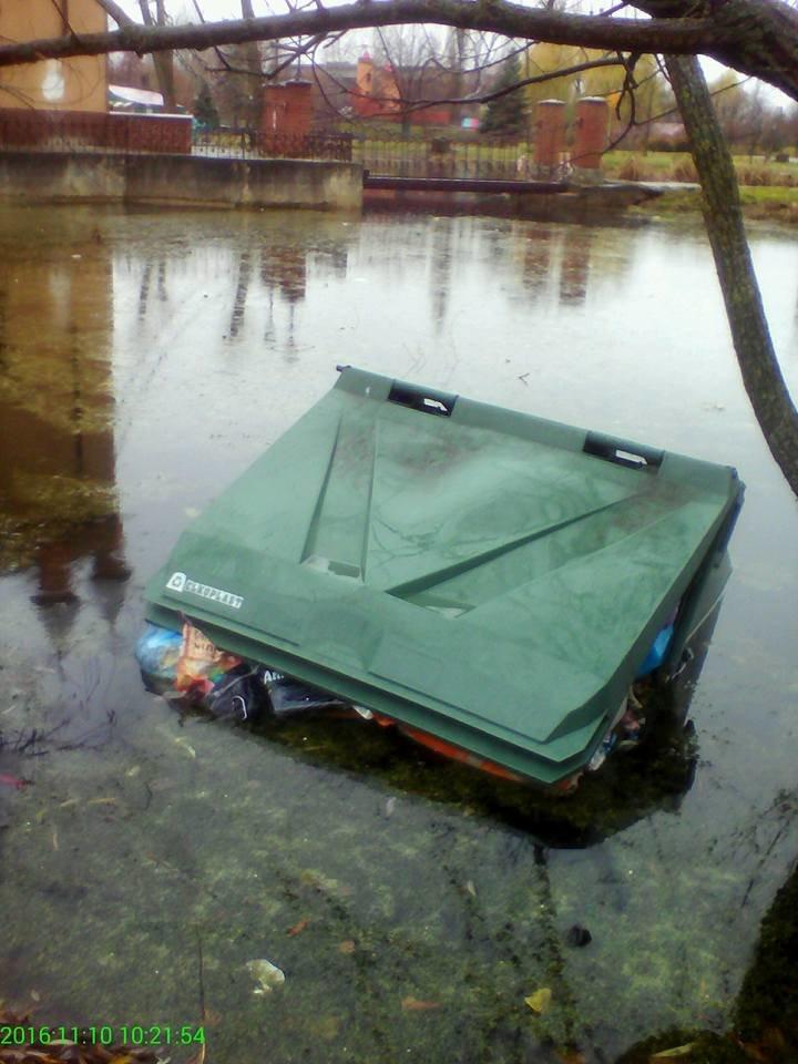 В Сумах быдло сбросило мусорные баки в озеро (ФОТО), фото-2