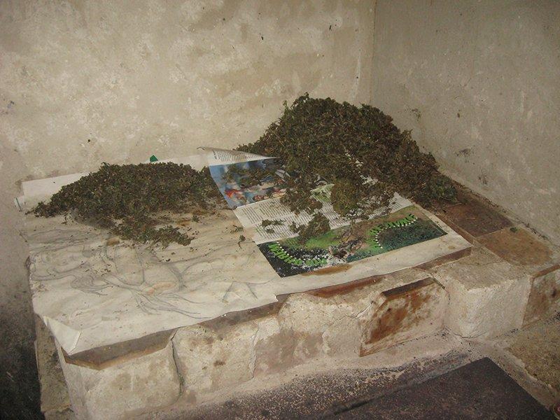 В Бахмутской оперативной зоне продолжается усиленная отработка, фото-4