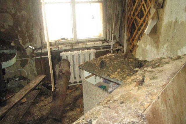 В Харьковской области два человека получили ожоги при попытке починить газовый баллон (ФОТО), фото-1
