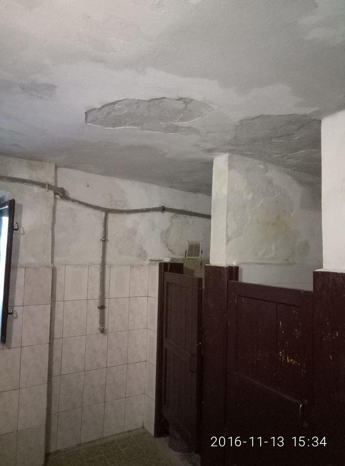 туалеот 3
