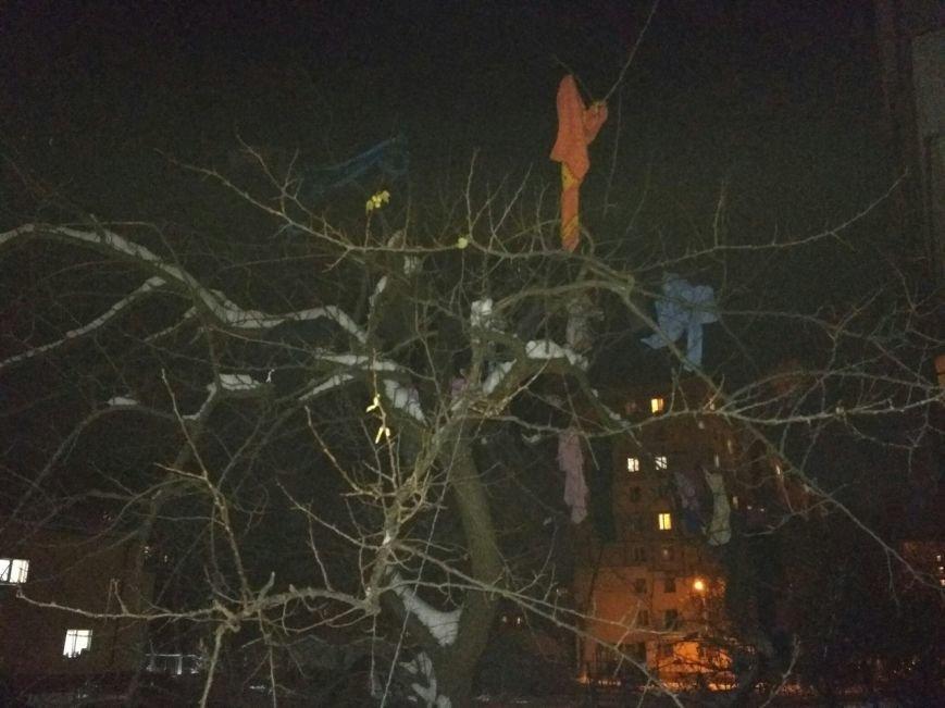 Досадное происшествие в Вишневом, фото-4