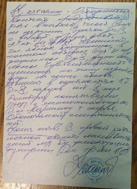 У избитого депутата Веселовской диагностировали сотрясение головного мозга (ФОТО), фото-3
