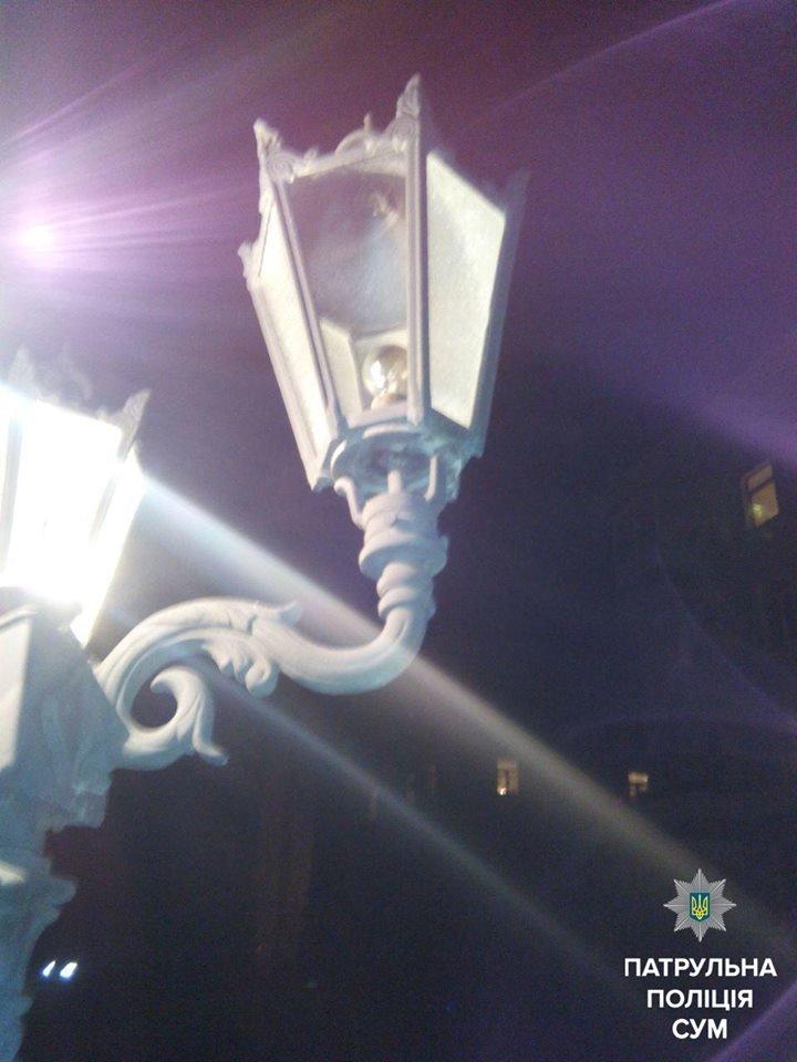 В Сумах задержали 2 вандалов, которые на Воскресенской сломали 3 дерева и разбили фонарь, фото-2