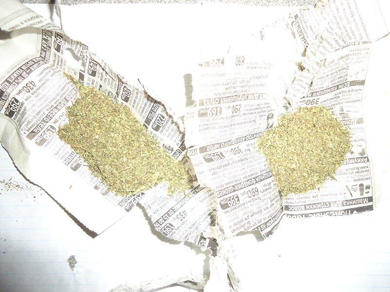 Бахмутские полицейские во время обысков обнаружили значительное количество конопли (ФОТО), фото-1