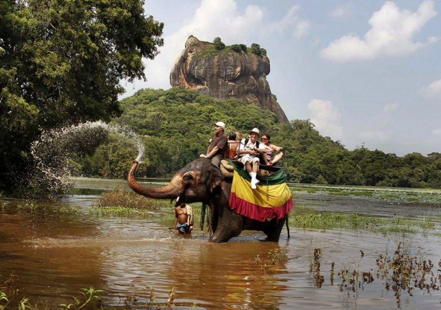 Ручные олени, водные вараны, бродячие слоны Сигирии, дикобразы и летучие мыши Шри-Ланки, фото-3