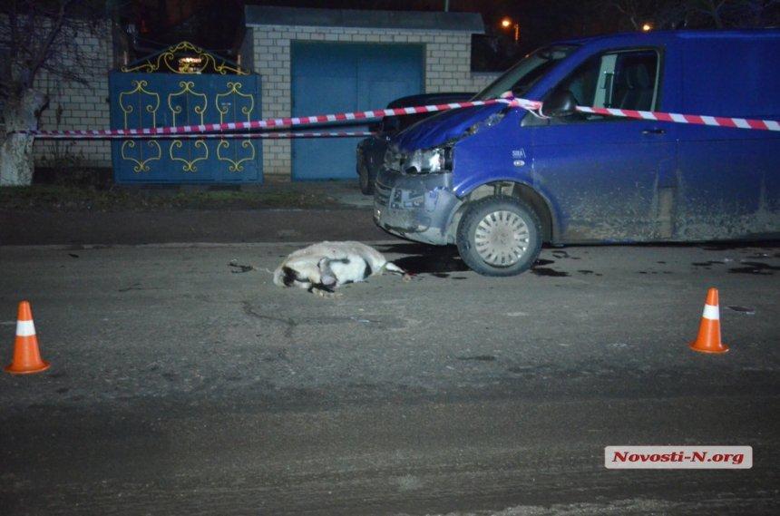В Николаеве микроавтобус сбил насмерть пожилую женщину (ФОТО), фото-3