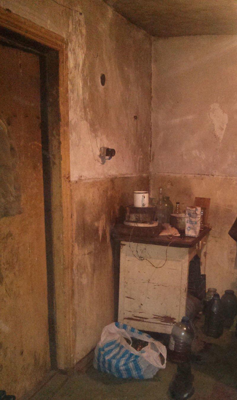 В Часов Яре из-за горе-матери ребенок попал в больницу, фото-2